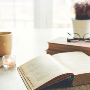 Bay Books Bundles for Avid Readers